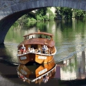 """Promenade en """"coche d'eau"""" sur l'Agout dans Castres"""