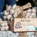 Ail rose de Lautrec en vente à Réalmont