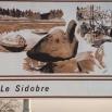 Le sidobre, plateau de granit du Tarn